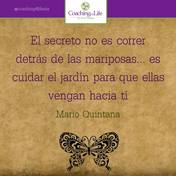 El secreto no es correr detrás de las mariposas... Es cuidar el jardín para que ellas vengan hacía ti