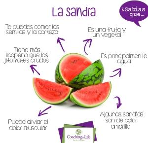 sabiasque 3_sandia