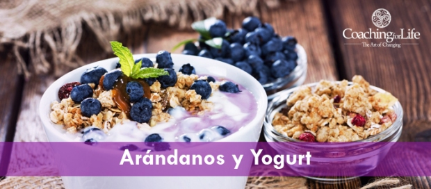 CFL_ARANDANOSY-YOGURT