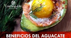 25_CFL_POST_BENEFICIOS_del-aguacate (1)